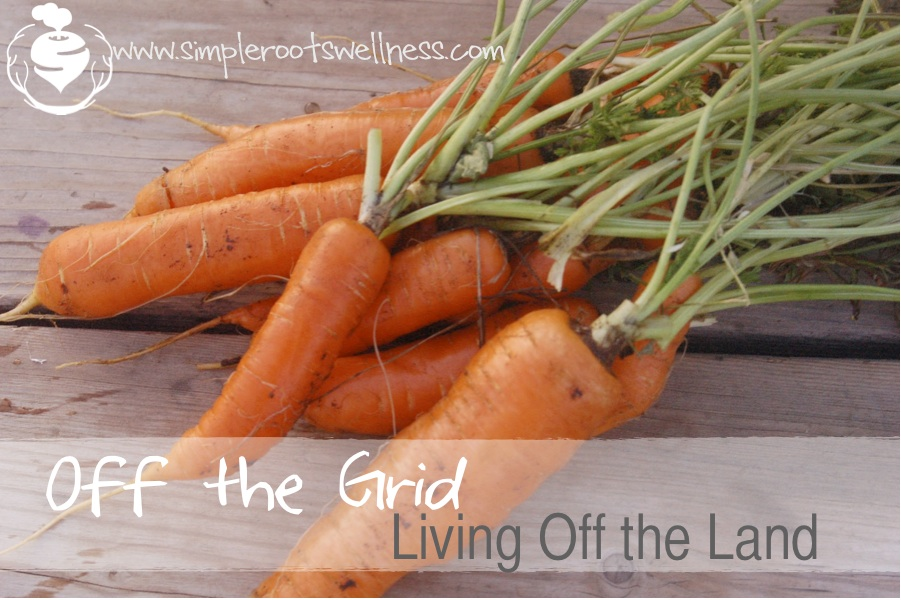 Living off the Land - simplerootswellness.com