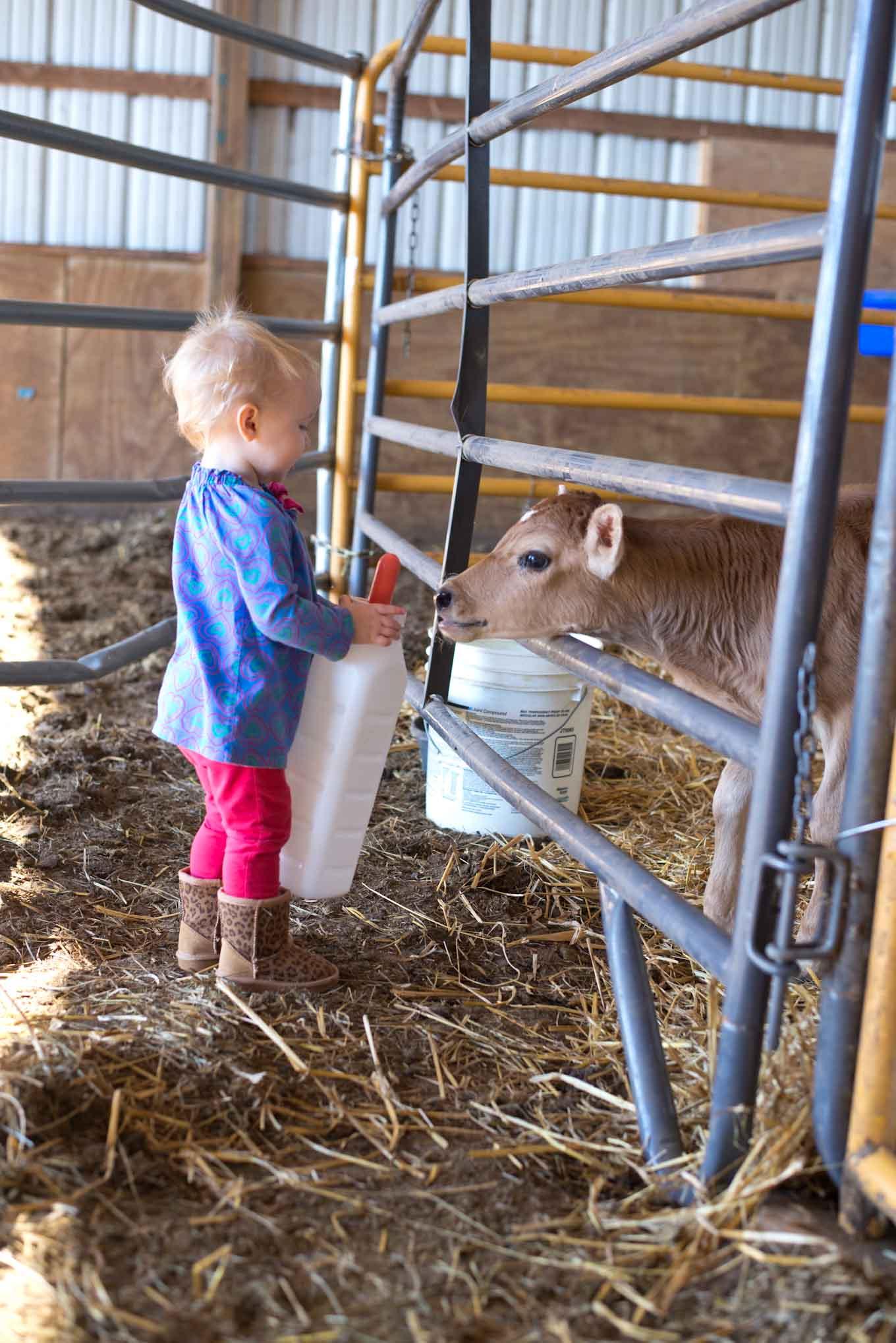 Life on an Iowa Farm. How to do modern homesteading.
