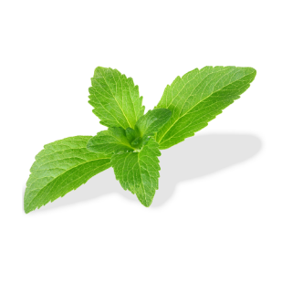 Stevia Side Effects and Why Our Family Quit