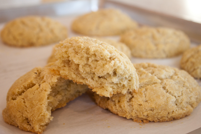 Buttery Grain Free Biscuits | simplerootswellness.com