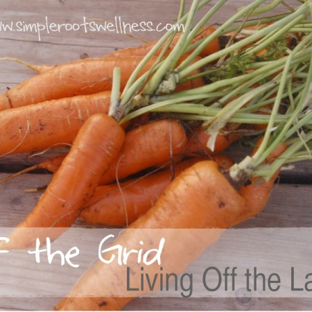 Off the Grid and Living off the Land