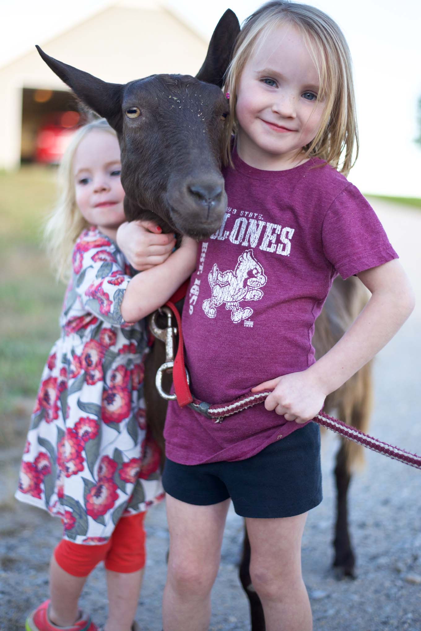 A modern family living on a hobby farm in Iowa looking to gain health and joy.