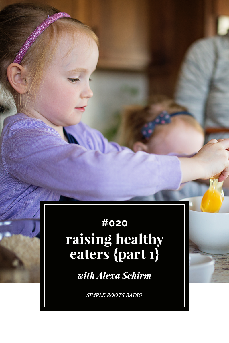We all long for healthy kids and yet what if we were feeding them all wrong? Check out what you are missing in ending the food wars and raising healthy eaters. It's the how-to guide you don't want to miss.