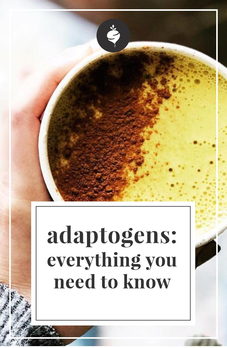 Adaptogens: Everything You Need to Know | simplerootswellness.com #podcast #adaptogens #healing #health #wellness #sleep #anxiety #weightloss