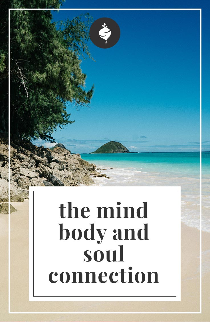 The Mind Body and Soul Connection | simplerootswellness.com #mind #body #soul #mindset #health #healthy #faith